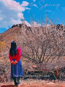 【花粉女生】偶遇昌都市芒康县的桃花,花粉随手拍-花粉俱乐部