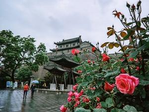 西安城墙第一门  永宁门,花粉随手拍-花粉俱乐部