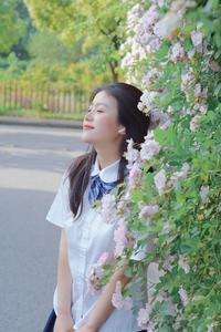 【花粉女生】水晶帘动微风起,满架蔷薇一院香,花粉随手拍-花粉俱乐部