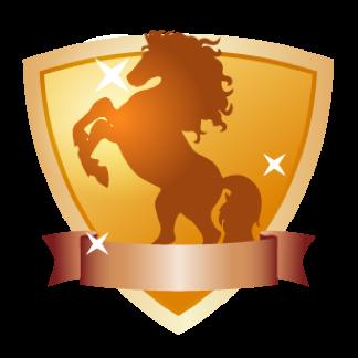 评测骑士团