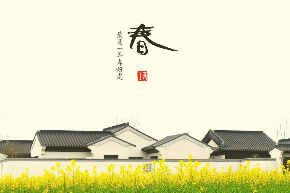 春的气息,花粉摄影-花粉俱乐部