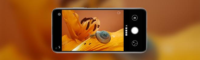 荣耀20 | 你不试试,怎么会知道手机也能拍出这样的微距效果!,荣耀20系列-花粉俱乐部