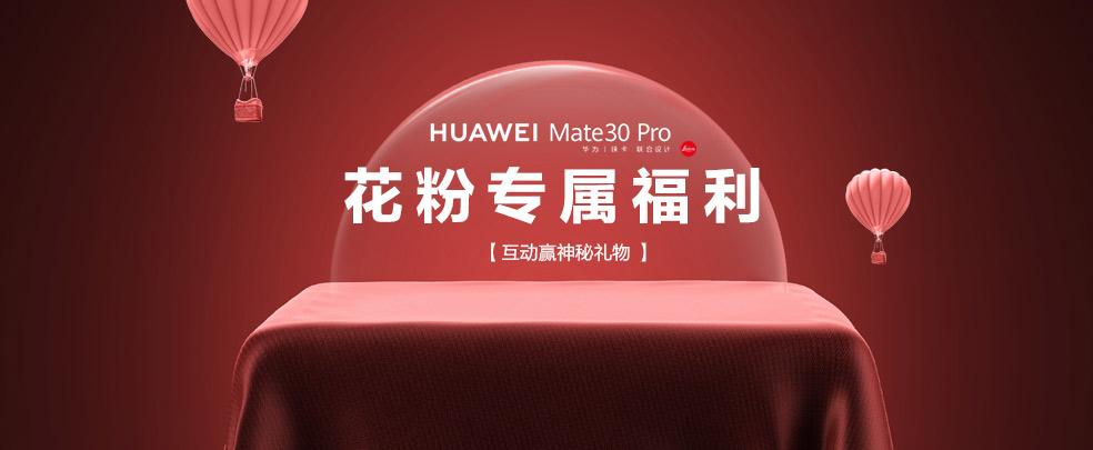 【互动赢神秘礼物 】  HUAWEI Mate30 Pro花-花粉俱乐部