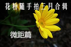 随手拍三月合辑之微距篇,花粉摄影-花粉俱乐部