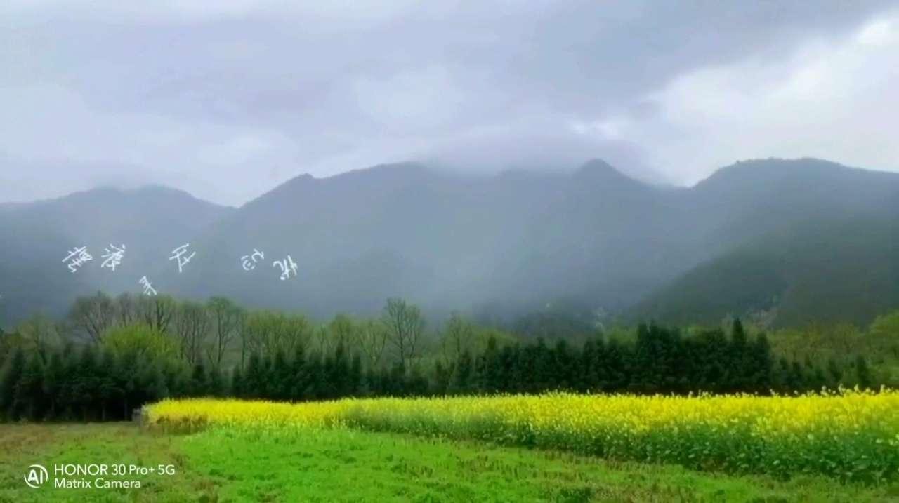 摄影 | 你也可以试试这波操作,一部荣耀30 Pro+搞定,如诗如画!,花粉随手拍-花粉俱乐部