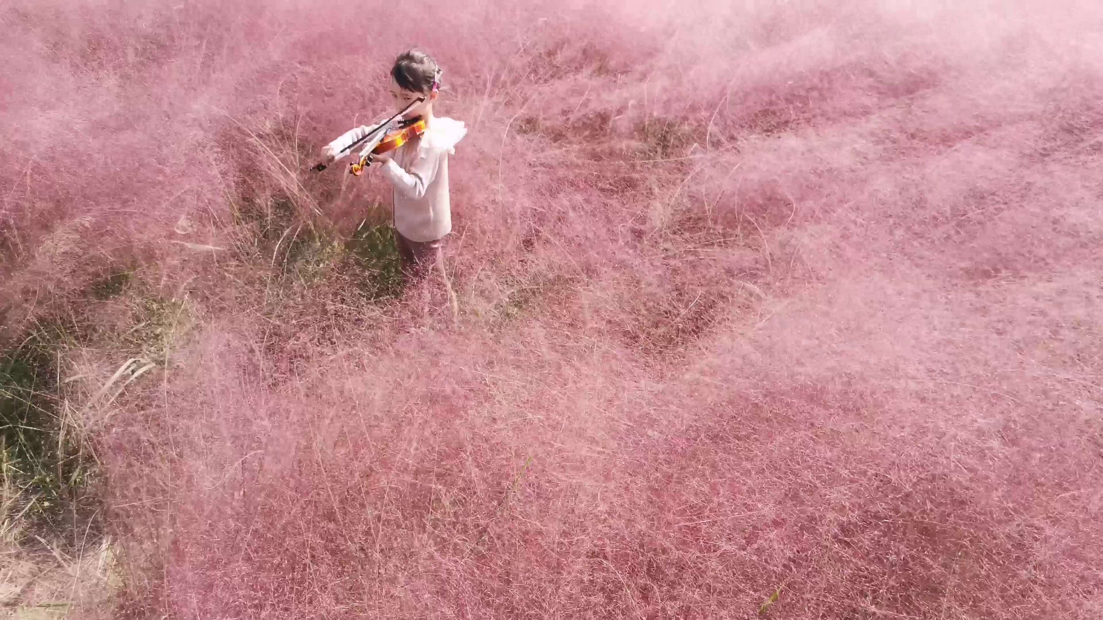 风动,如梦如幻,花粉随手拍-花粉俱乐部