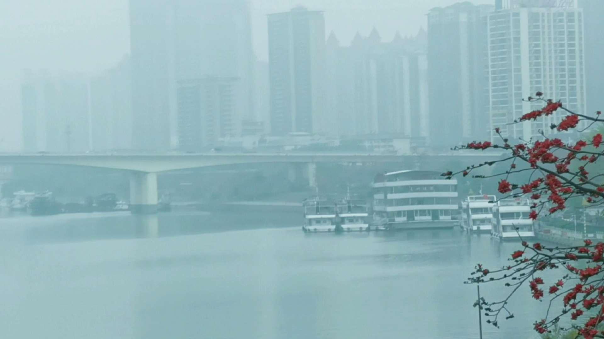 【P40pro+随手拍视频】雾里看江,花粉随手拍-花粉俱乐部