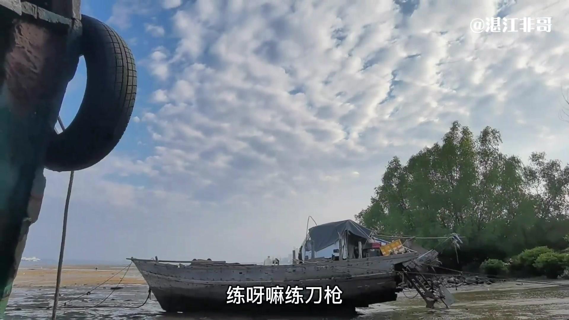 分享 | 【我为家乡代言】湛江的秋天,新影像-花粉俱乐部