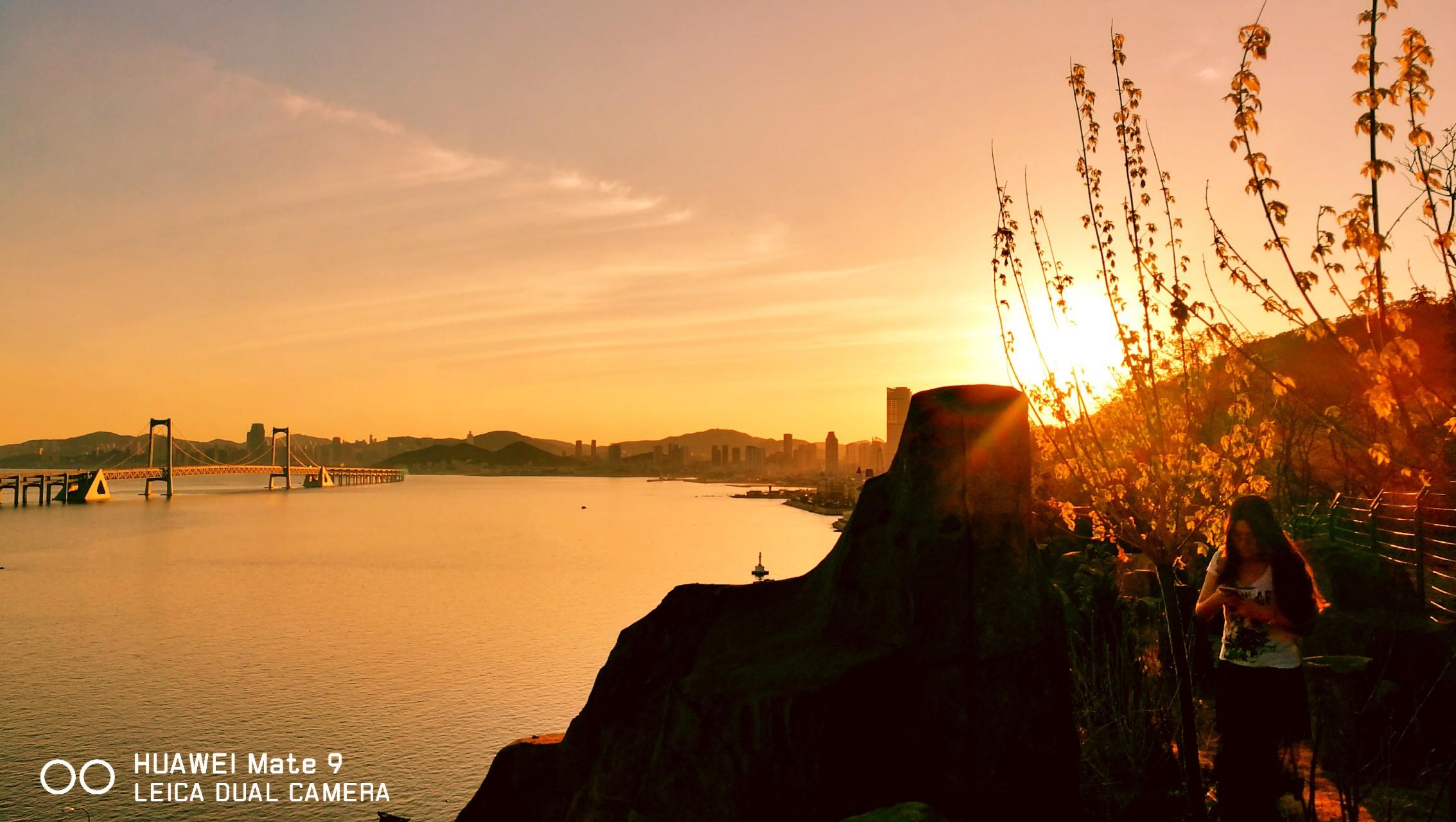 【光影生活】落日黄昏,花粉随手拍-花粉俱乐部